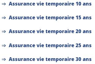 Terme assurance vie temporaire